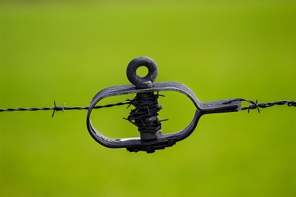 green-tiefenscharfe-focus-barbed-wire-60066.jpeg